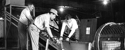 historic photo of channel fish employers